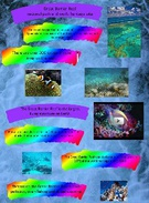 Great Barrier Reef's thumbnail