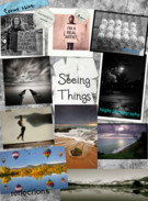 Seeing things's thumbnail