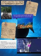 ocean habitats notes's thumbnail
