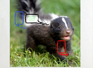The Striped Skunk's thumbnail