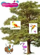 For the Birds-2nd Grade Reading group's thumbnail