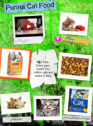 Cat food's thumbnail
