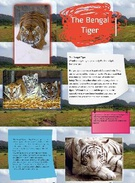the bengal tiger's thumbnail