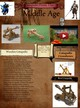 Catapults from middle age thumbnail
