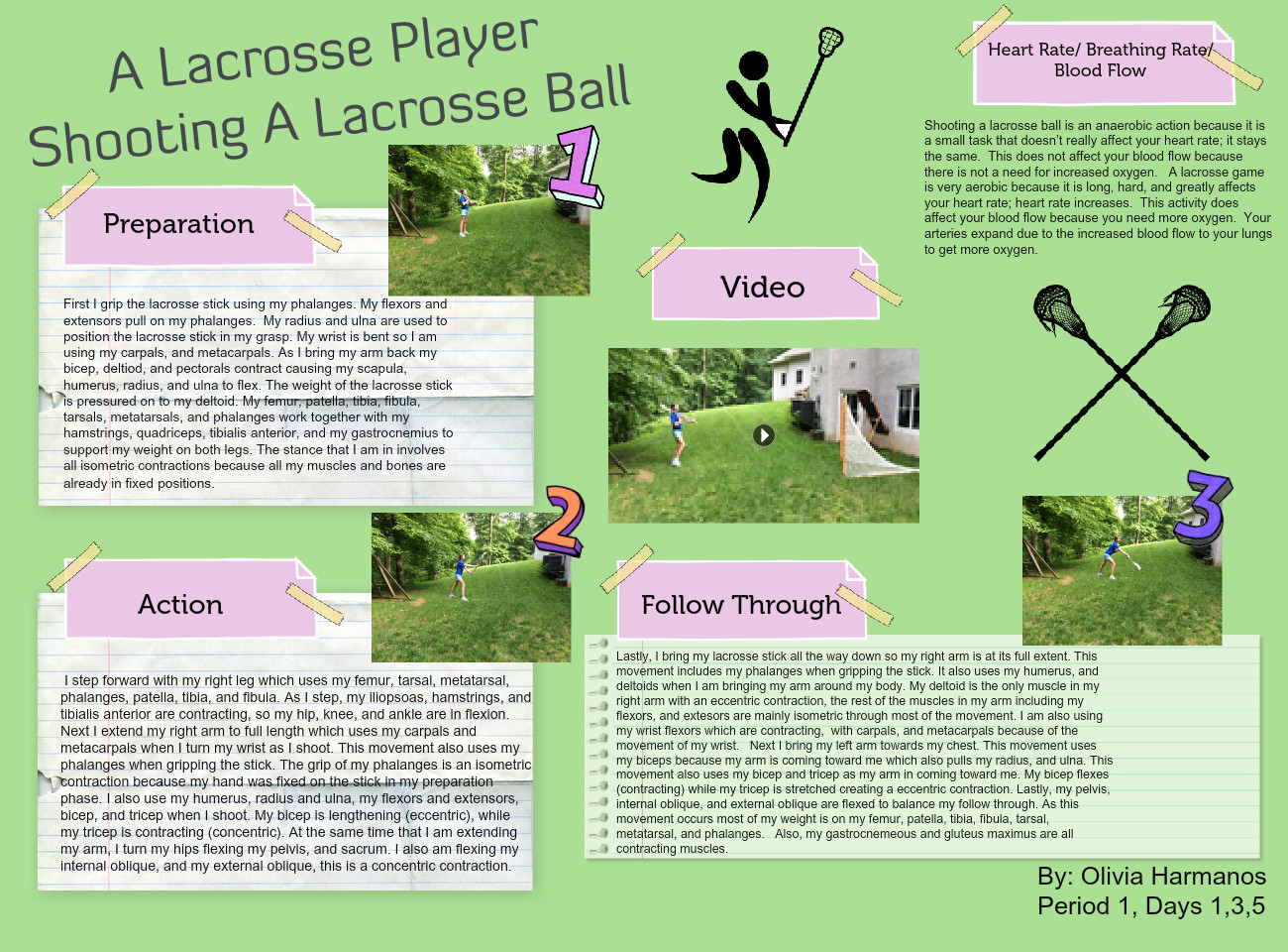 [2013] Olivia Harmanos: A Lacrosse Player Shooting A Lacrosse Ball