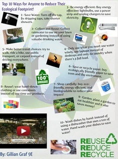 Top 10 Ways for Anyone to Reduce Their Ecological Footprint!