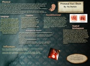 Prenatal Fact Sheet's thumbnail