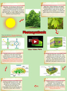 Photosynthesis's thumbnail