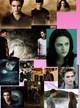 NEW MOON thumbnail