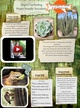 Digital Factfinding: Succulents thumbnail