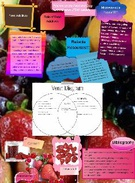 Food Additives's thumbnail