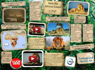Save the African Lions