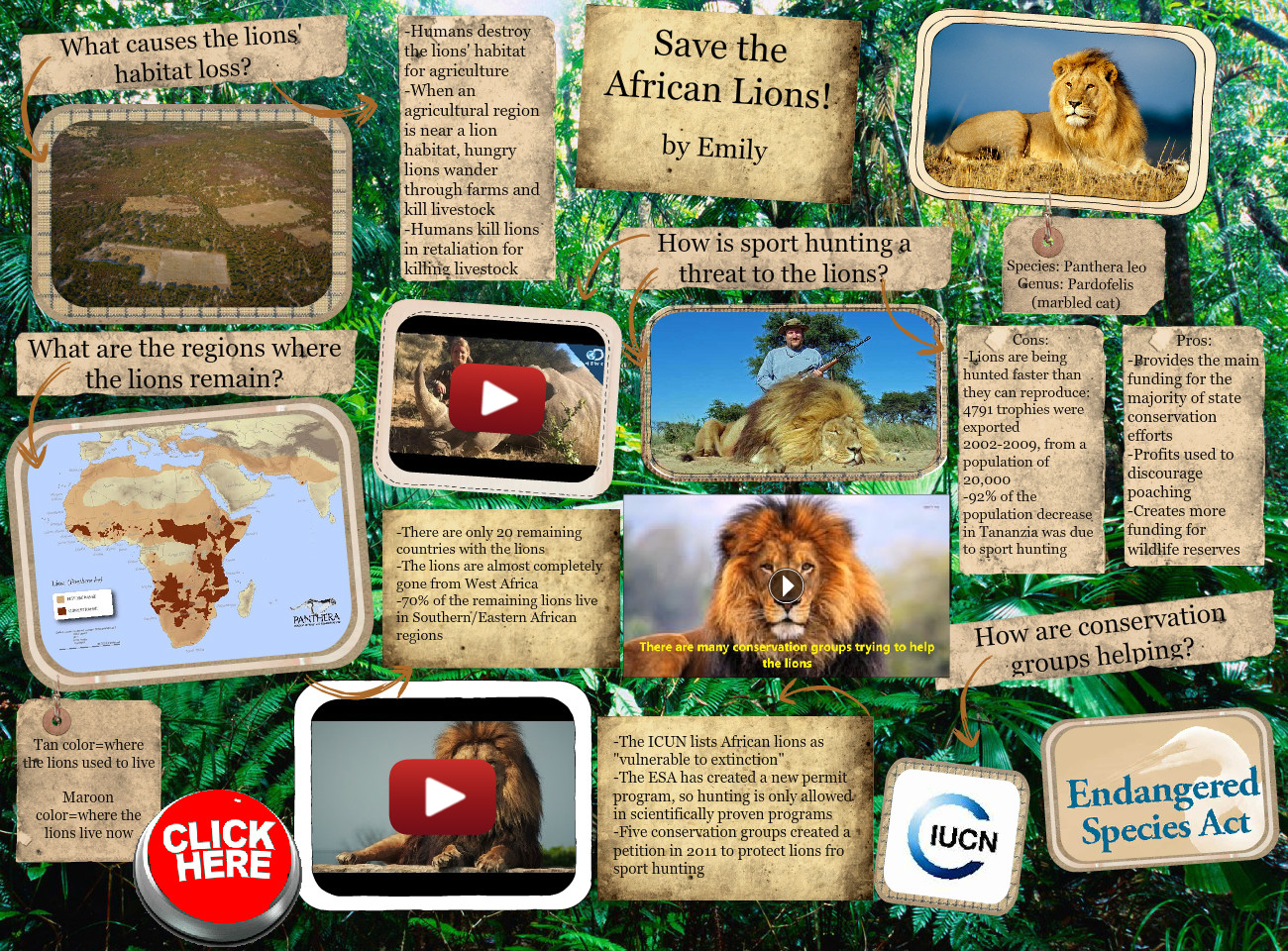 [2015] Kate+Emily R (3rd Earth Science 2015): Save the African Lions